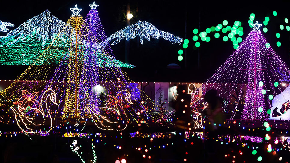 Displays at The Lights of Christmas
