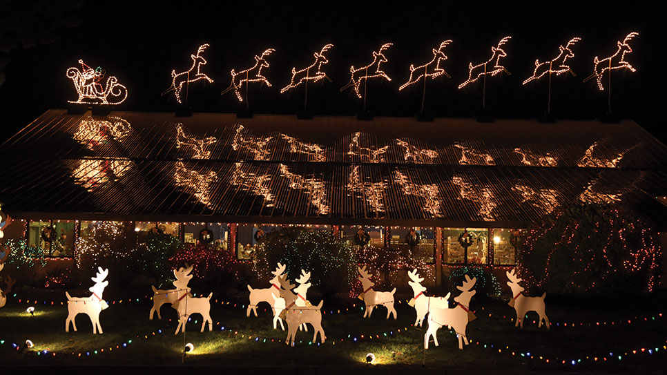 Edison Wa Christmas Events 2020 The Lights of Christmas Festival   Largest Christmas light display