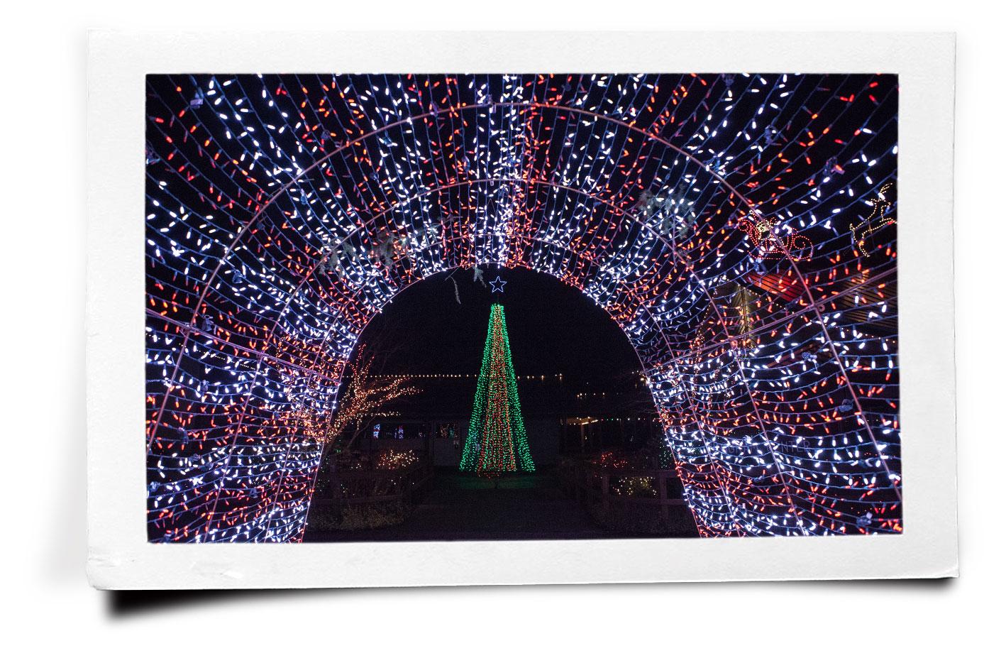 pf_tunnel-of-lights